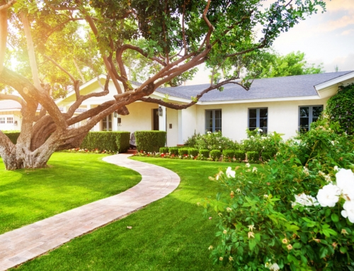 9 Landscaping ideas to up your home's value.